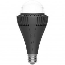 BX series performance LED Lamp 100W