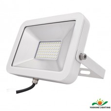 LED Flood Light Bulbs YSFLAPD30W